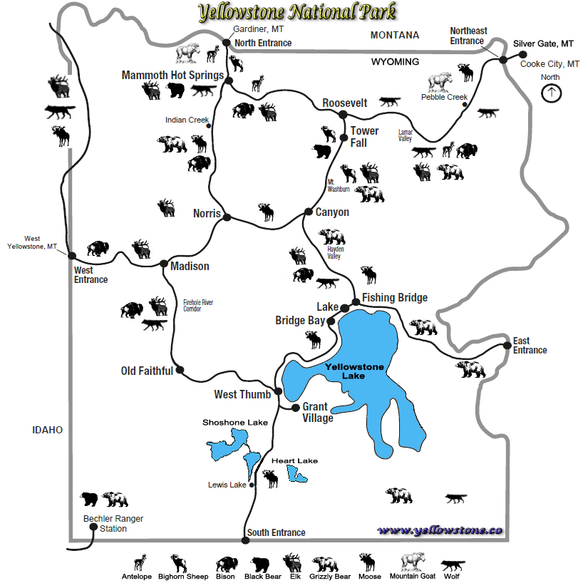 This map of yellowstone national park shows points of interest including old faithful and mammoth hot springs