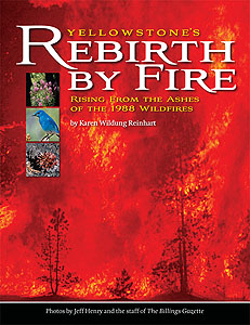 Yellowstone's Rebirth by Fire by Karen Reinhart