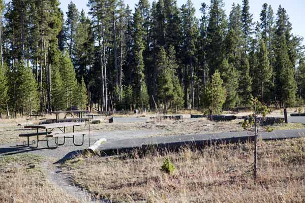 Map pictures and videos yellowstone national park for Fishing bridge campground