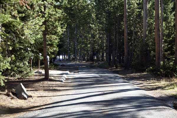 Fishing bridge campground information or click here for a for Fishing bridge rv park