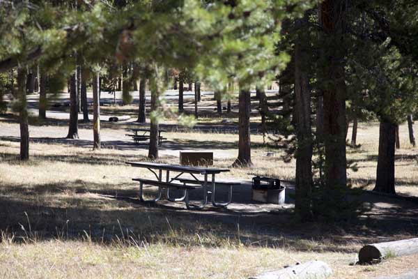 Norris Campground by John William Uhler © Copyright