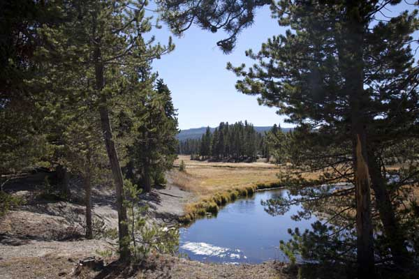 Norris Meadow and Gibbon River at Norris Campground by John William Uhler © Copyright