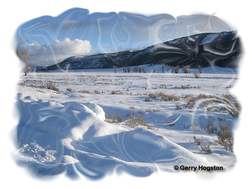 Lamar Valley in Yellowstone National Park ~ © Copyright All Rights Reserved Gerry Hogston