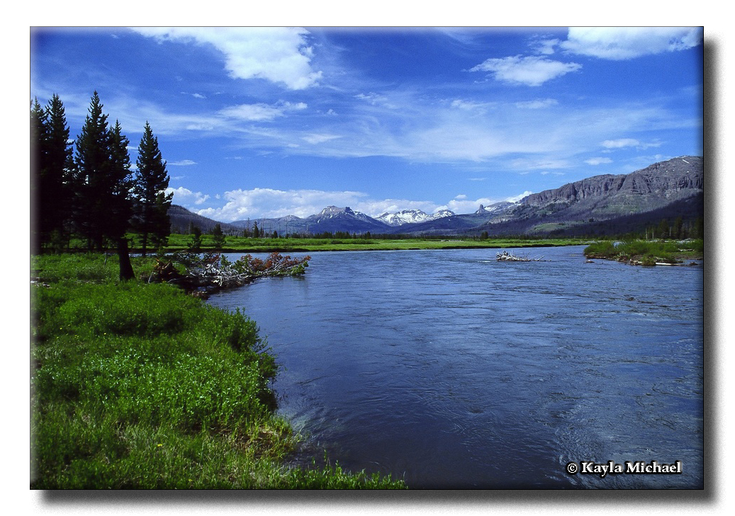 Confluence of the Yellowstone River and the Thorofare Creek by Kayla Michael © Copyright All Rights Reserved