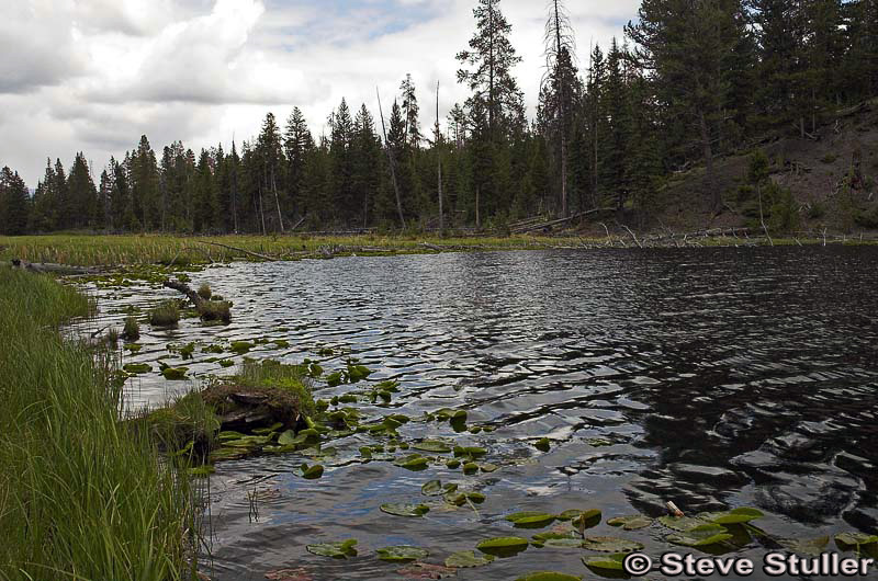 Lost Lake - Yellowstone National Park ~ Photo by Steve Stuller © Copyright All Rights Reserved