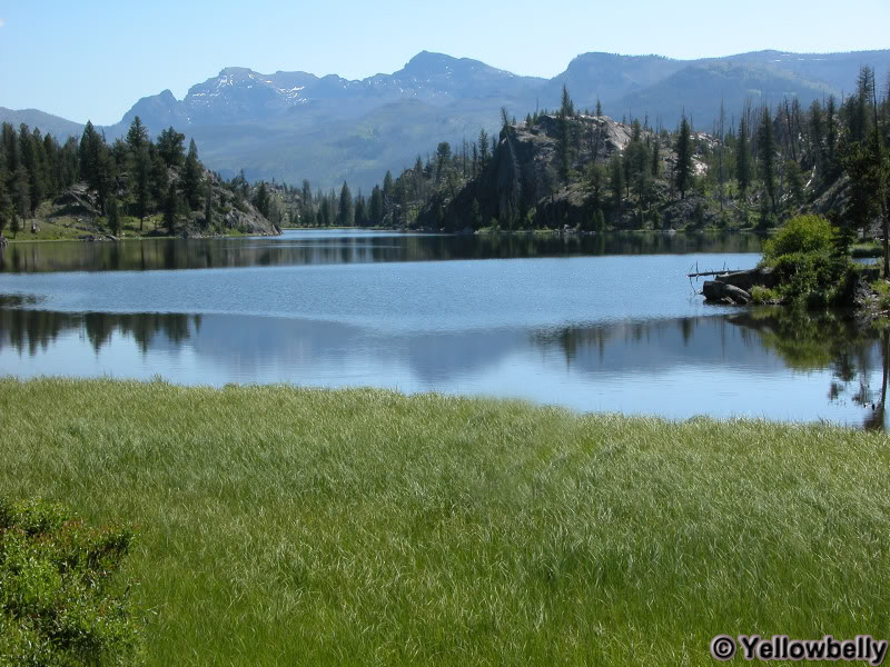 McBride Lake - Yellowstone National Park ~ Photo by Yellowbelly © Copyright All Rights Reserved