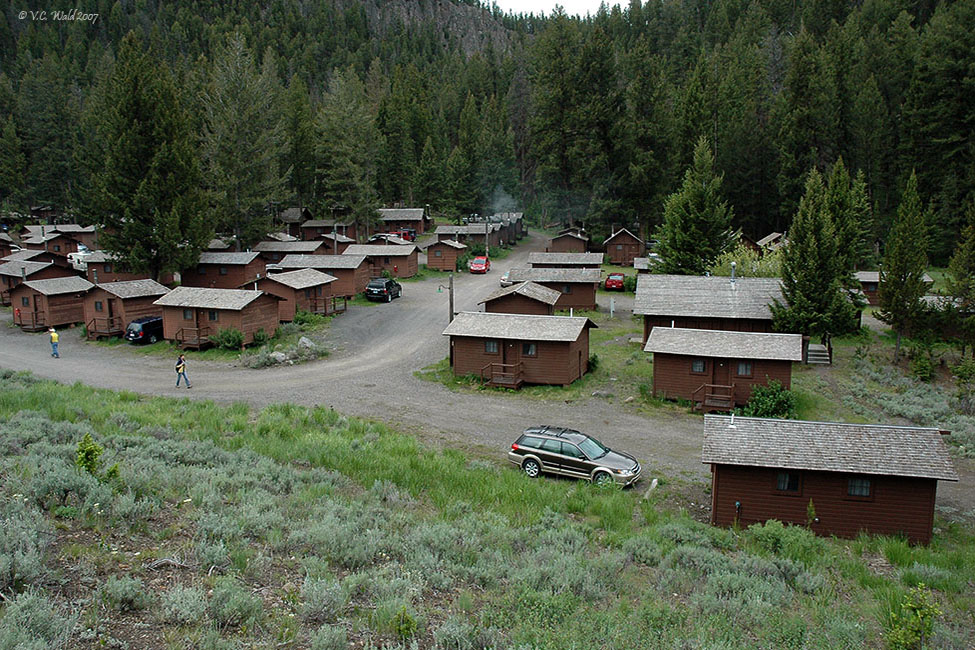 Roosevelt Rustic Cabins in Yellowstone National Park by V.C. Wald © Copyright All Rights Reserved