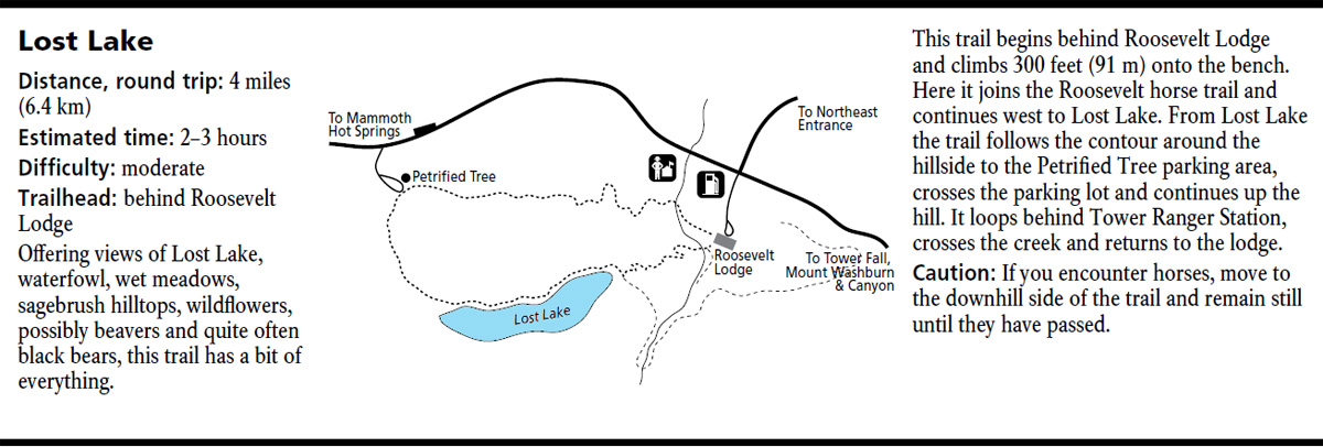 Lost Lake Map - Yellowstone National Park ~ NPS Map
