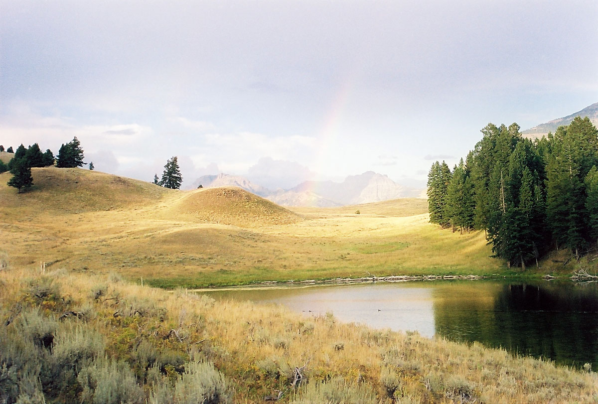 Yellowstone Rainbow Photo by John William Uhler © Copyright All Rights Reserved