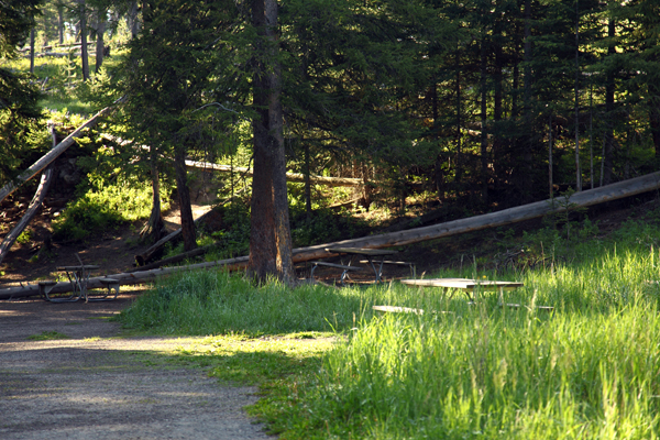 Lava Creek Picnic Area by John William Uhler © Copyright