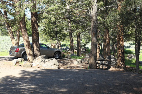 Yellowstone Picnic Area by John William Uhler © Copyright