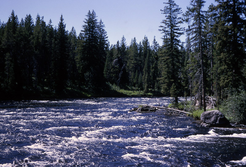 Bechler River - Yellowstone National Park ~ by RG Johnsson NPS Photo