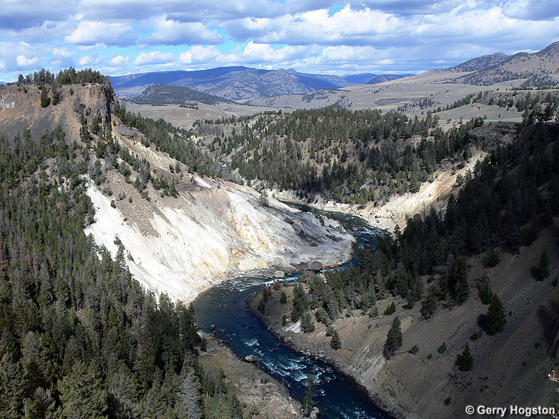 Yellowstone River - Yellowstone National Park ~ Photo by Gerry Hogston © Copyright All Rights Reserved