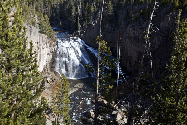 Gibbon Falls - Yellowstone National Park - by John William Uhler © Page Makers, LLC
